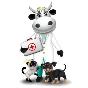 cow veterinar