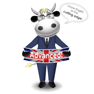 cow advanced